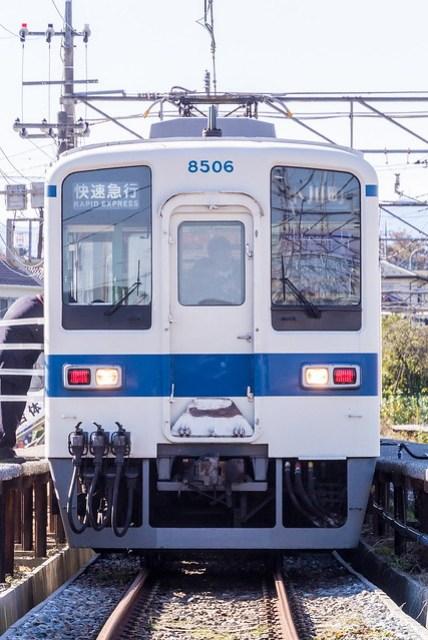 DSC_8734