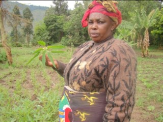 Proud Mrs Lukumay in her amaranth field (Photo credit: AVRDC / Inviolate Mosha)