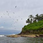 08 Viajefilos en Panama. Isla de Bocas 11