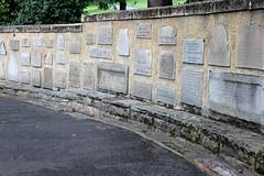 gravestones St Davids park