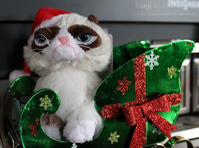 grumpycat in sleigh