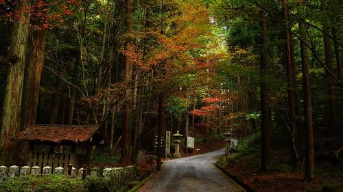 The UNESCO World Heritage Site -Hieizan Enryaku-ji Temple 比叡山延暦寺 横川