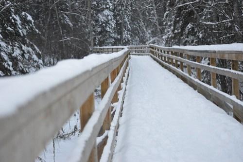 hiking around edmonton parks