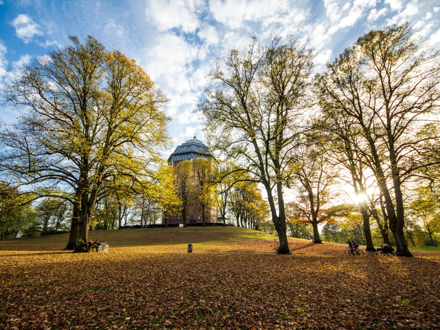 parken in Hamburg | foto door Stefan Vossemer