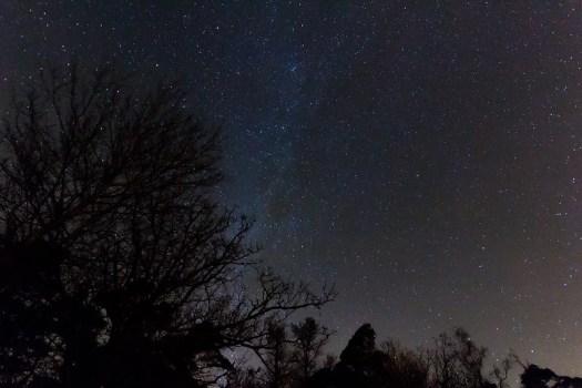 Elleholm By Night