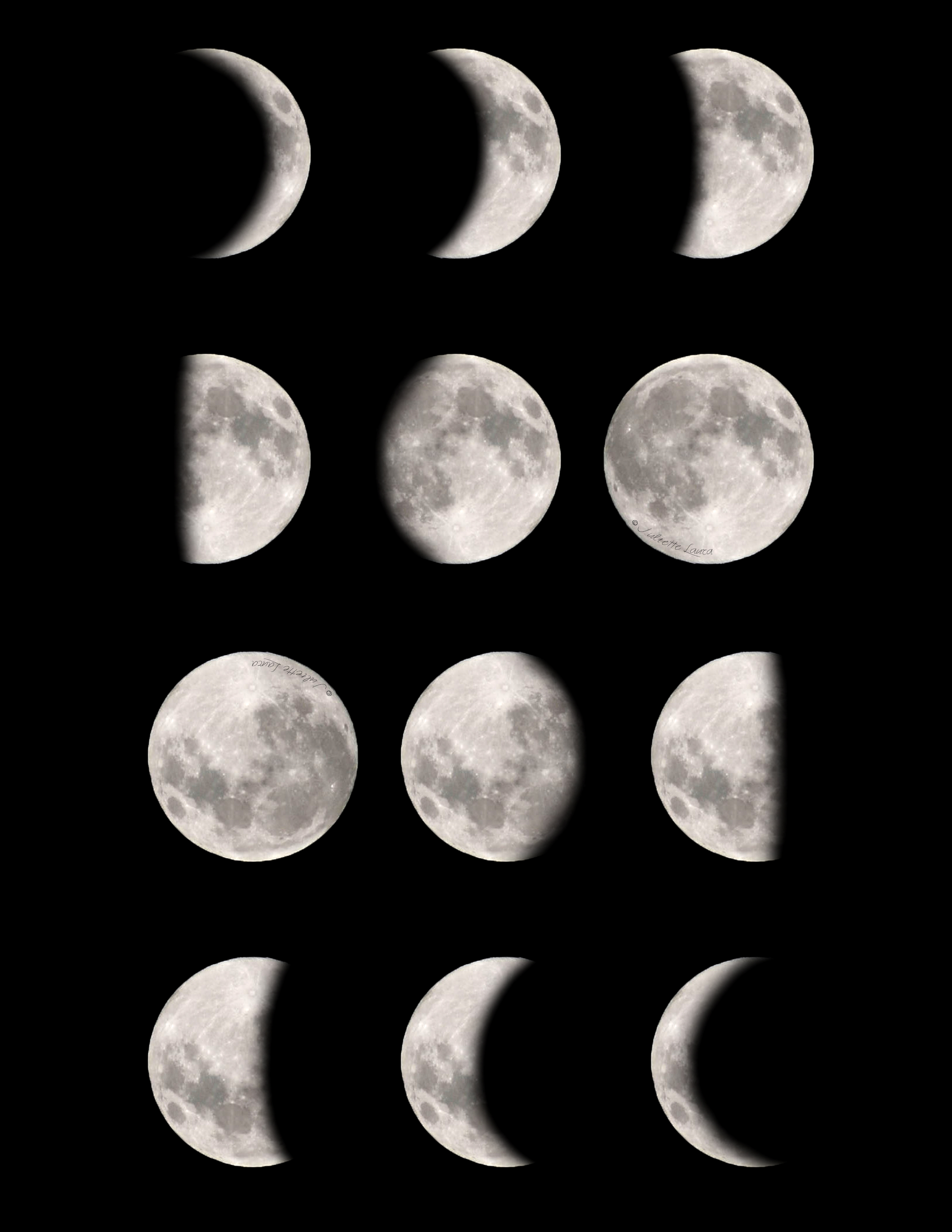 diagram of moon phases printable hotpoint dryer timer wiring search results for the worksheet