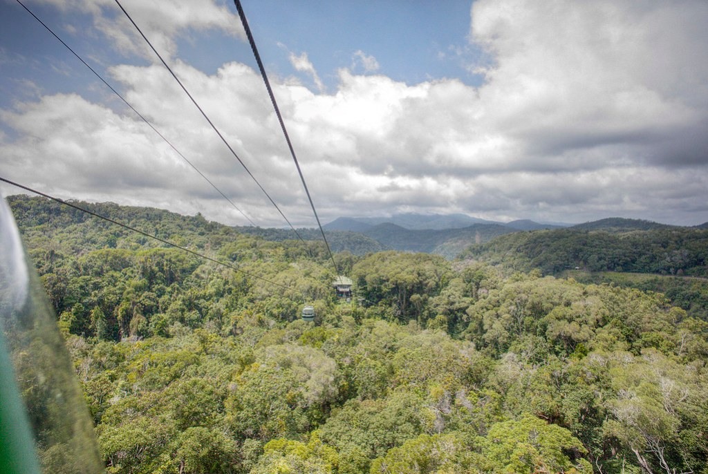 Cruising over the rainforest on the Skyrail.