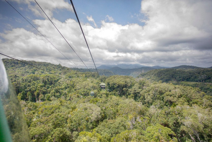 Cruising over the rainforest on the Skyrail.