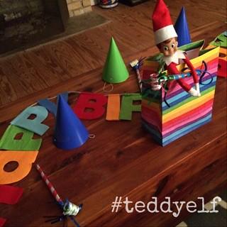 Teddy Celebrates Nonna