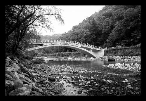 The Asian bridge