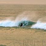 DIA-17-JEFFREYS-SURFISTA