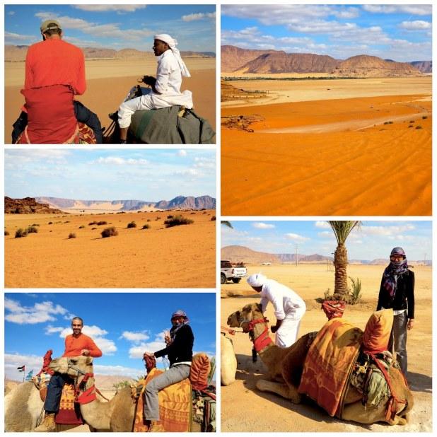 Paseo en camello Wadi Rum