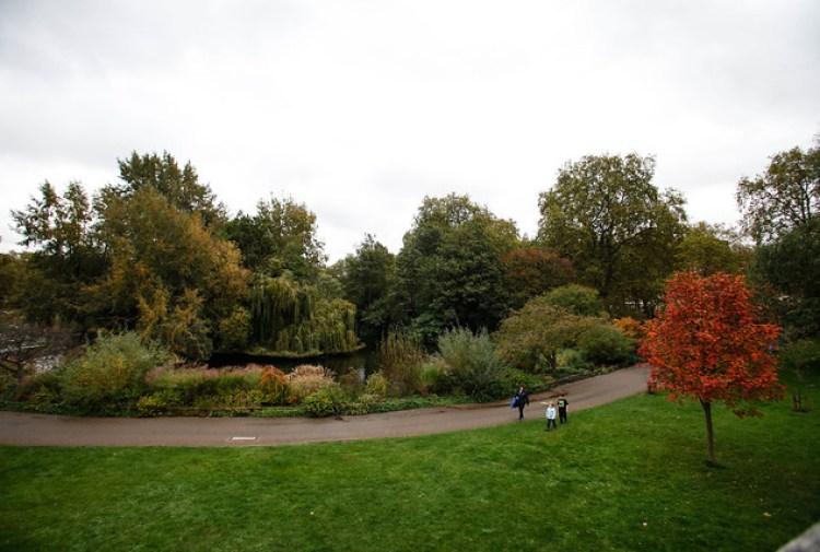 St.James Park, Buckingham palace