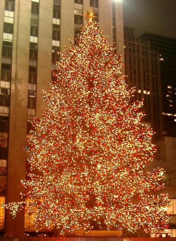 Foto gratis un árbol con luces de navidad