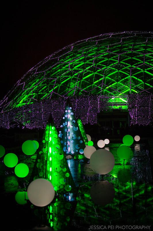 Climatron Lights at Garden Glow St. Louis