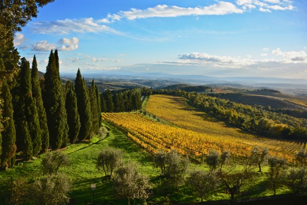 Elevation of Gaiole in Chianti, Province of Siena, Italy ...
