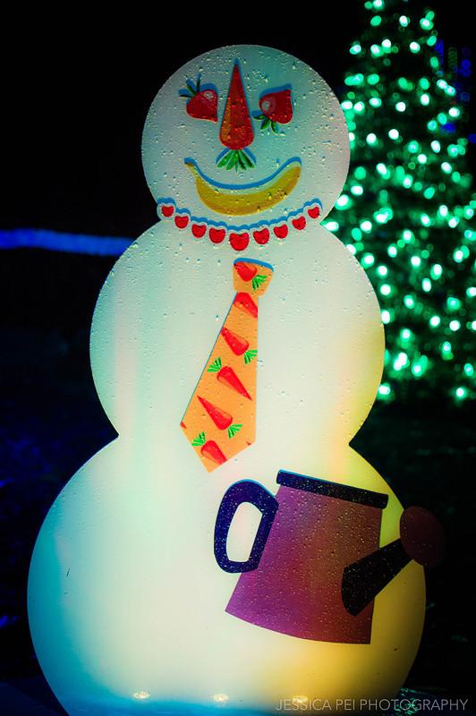 Build Snowman in Garden Glow St. Louis