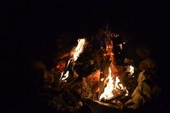 001 Duwayne Burnside's Birthday Bonfire