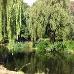 Viajefilos en Londres, parques 06
