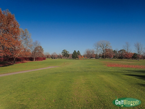 Green Oaks November 2-020136