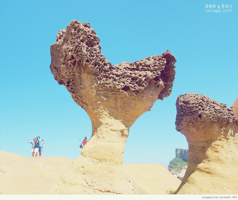 北海岸,奇岩,野柳 @薇樂莉 Love Viaggio   旅行.生活.攝影