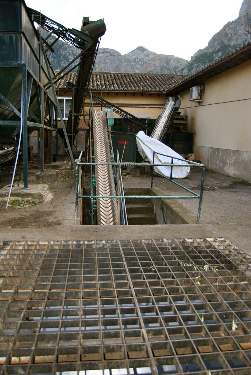Cooperativa San Bartolomé( Sóller) Oli de Mallorca