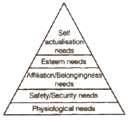 basic psychological needs - directing class 12 ncert