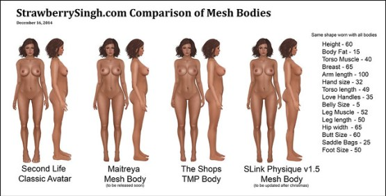 StrawberrySingh.com Comparison of Mesh Bodies