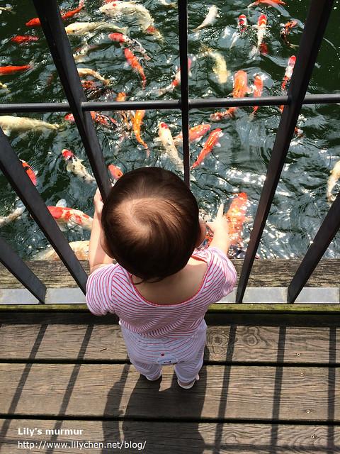 帶小妮去看魚,開心的用她的小手指比著魚,也喊著「魚!魚!」