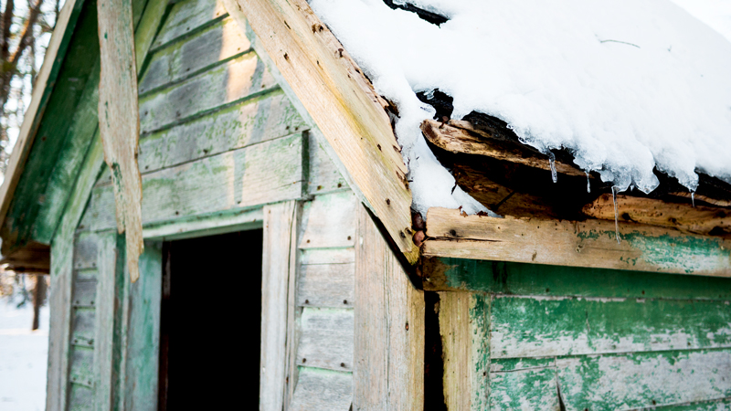 Snowy Maine Outhouse