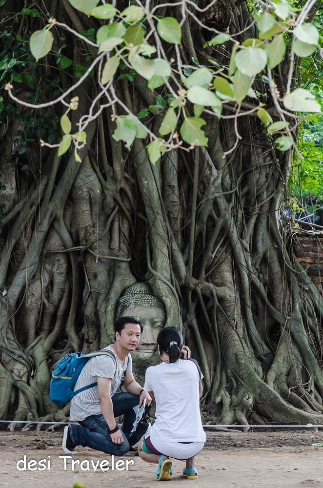 Tourists with Buddha Head Tree Roots