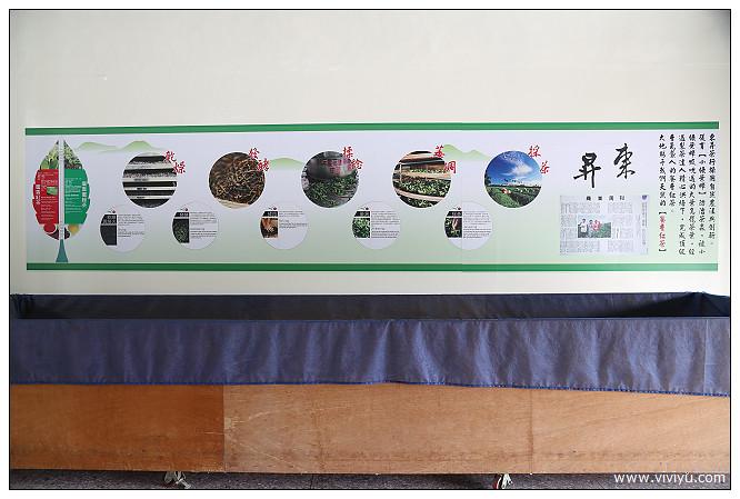 嘉茗茶園,採茶,旅遊,東昇茶行,舞鶴,花蓮,蜜香紅茶,製茶 @VIVIYU小世界