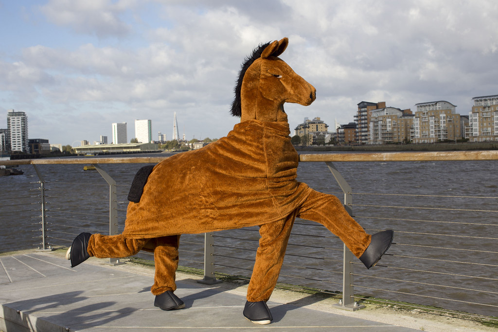 The London Pantomime Horse Race Horse Training Day In
