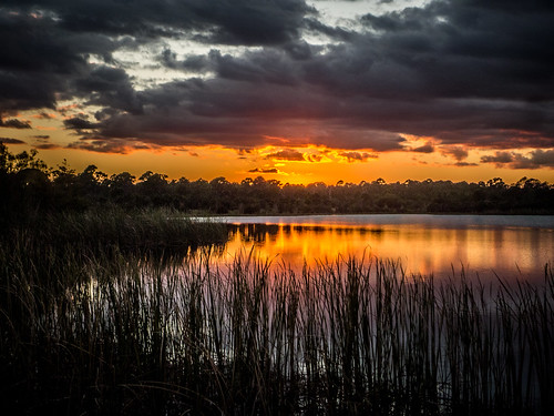 Indrio Sunset Panasonic