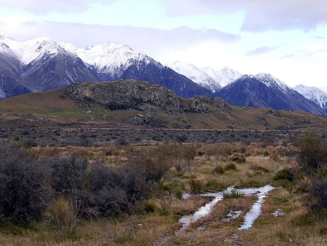 Mount of the Rohirrim