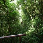 03 Viajfilos en Panama. Canopy en Boquete 20