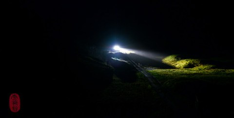 Headlights on a fjord road.
