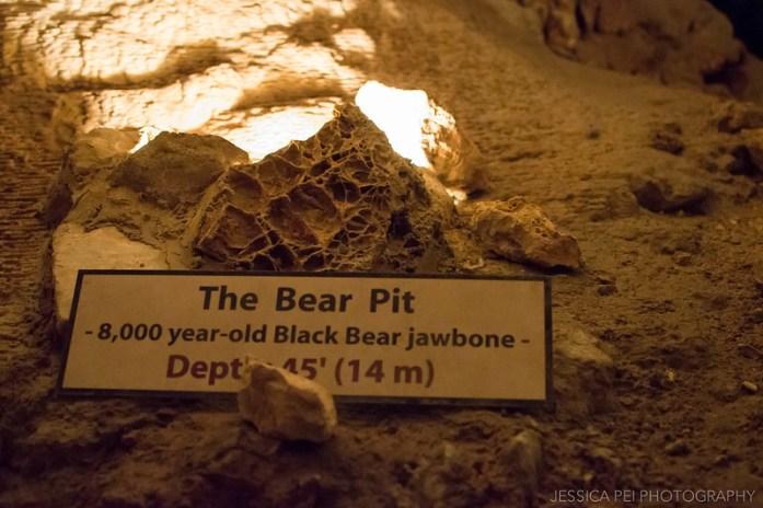 The Bear Pit Natural Bridge Caverns