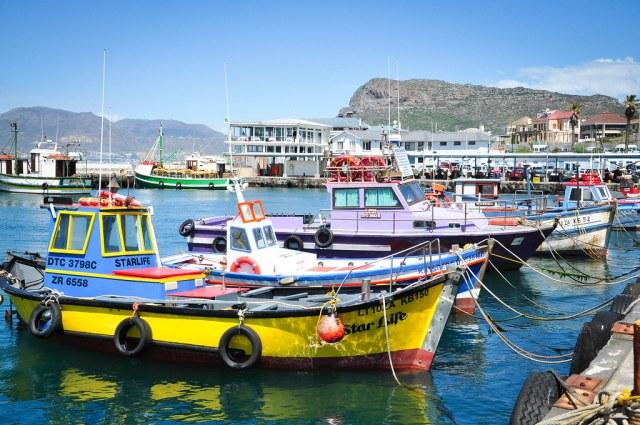 Etelä-Afrikka 2014 488