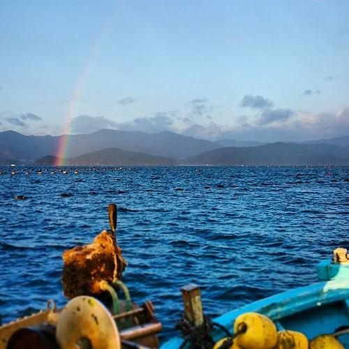 本日は水揚げしてて、ふと顔を上げたら朝早くから虹が #kanehiro http://ift.tt/1rRdcmf
