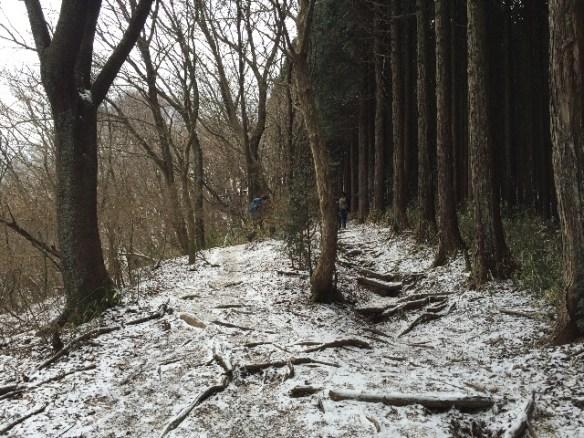雪が残ってる