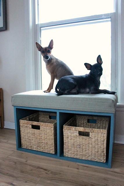 Dog Window Bed : window, Window, Storage, Bench, {Behr, Paint, Year,, Look}, Cloverhill