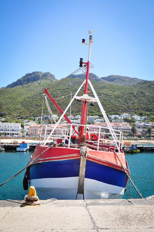 Etelä-Afrikka 2014 463