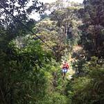 03 Viajfilos en Panama. Canopy en Boquete 09