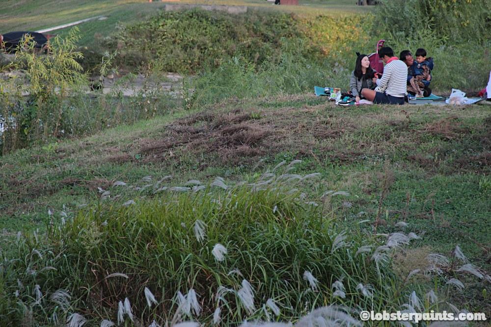 4 Oct 2014: Yeouido Hangang Park | Seoul, South Korea
