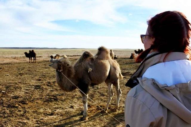 Gobi desert (9)