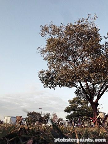 5 Oct 2014: Hangang Park | Seoul, South Korea