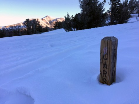 Half-buried trail marker