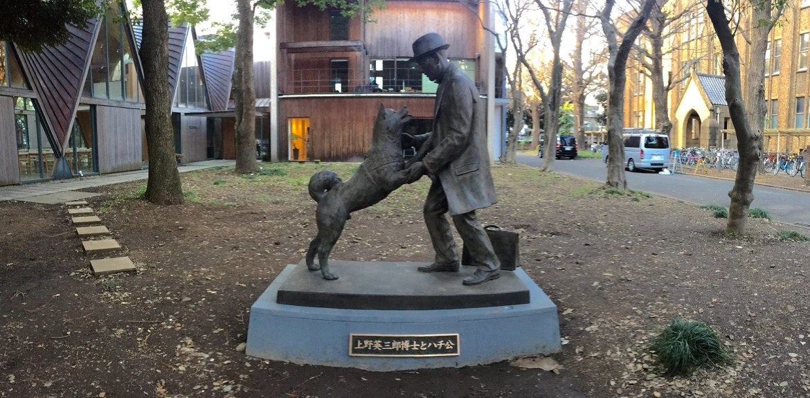 Hachiko reunited with his master : A photo story of the ...