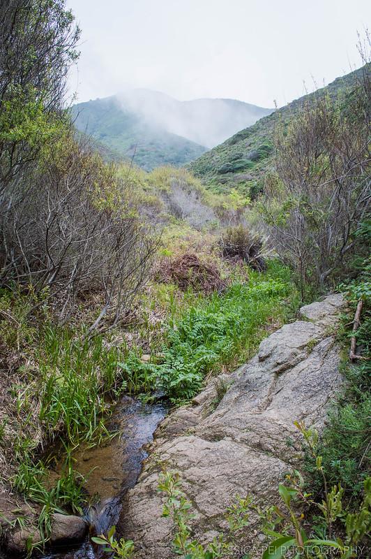 Garrapata State Park Mountains